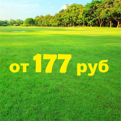 Травосмесь УНИВЕРСАЛЬНАЯ (оптовик). Газонная трава для разных типов газонов