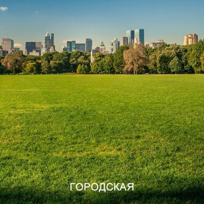 Травосмесь ГОРОД. Газонная трава для городского озеленения