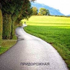 Травосмесь ПРИДОРОЖНАЯ. Газонная трава для посева вдоль дорог