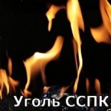 Уголь каменный ССПК 50-200 (слабоспекающийся уголь)